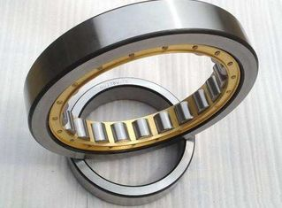 GCr15 Double Row SL014838 Cylindrical Roller Bearings